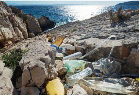 Mar Mediterraneo, un delicato ecosistema da tutelare e una risorsa economica